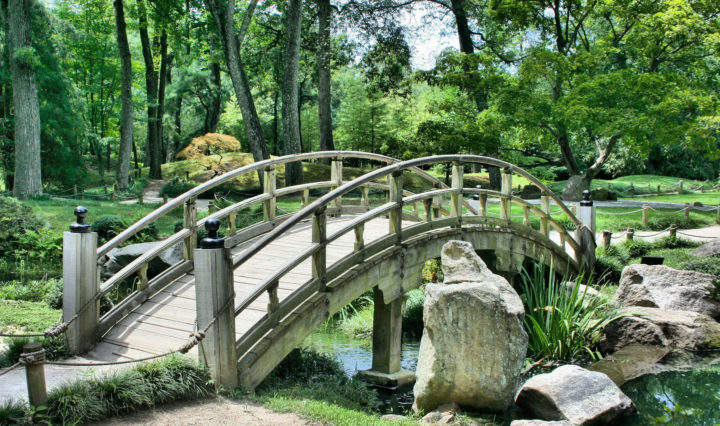 How A Beautiful Bridge Can Change Your Garden